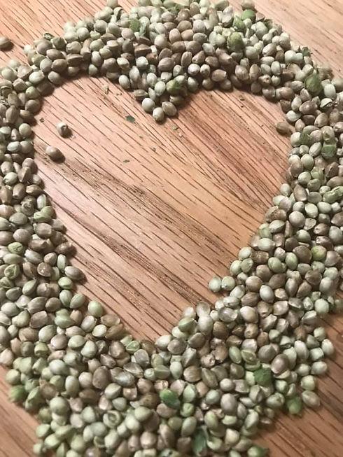 seeds heart.jpg