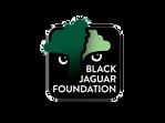 Black_Jaguar_4x3.png