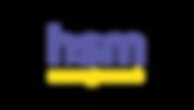 [Logo]_HSM_management_Prancheta_1_cópia_