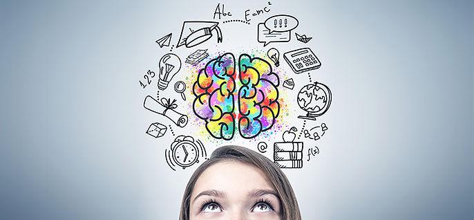 neurociência_educação_736x341.jpg