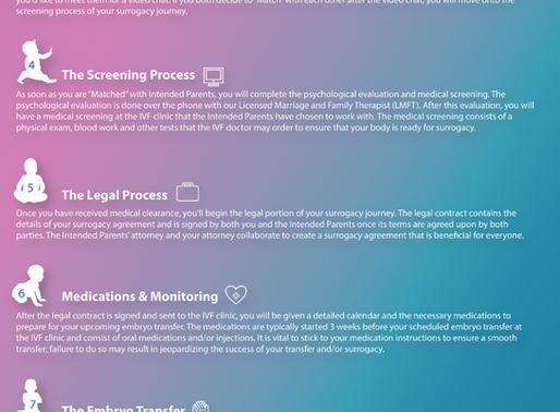 PrimeSurro Surrogacy Process