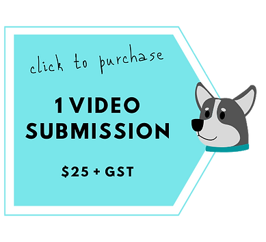 Video Submission (2).png