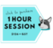 1 hour session button.png
