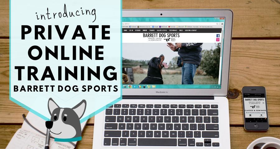 Private Online Training Announcement.png