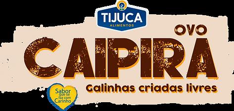 LOGO-CAIPIRA-com-logos.png
