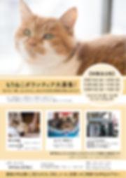 ボランティア募集チラシ 日程あり表_アートボード 1.jpg