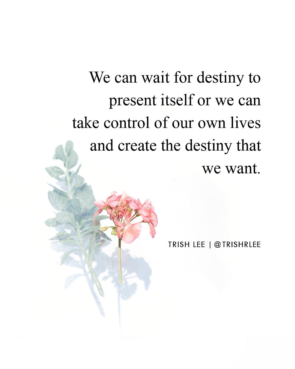 Choose Your Life's Destiny - Make It Or Wait For It