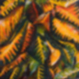 STL Small Tropical 8X8 Acrylic on canvas