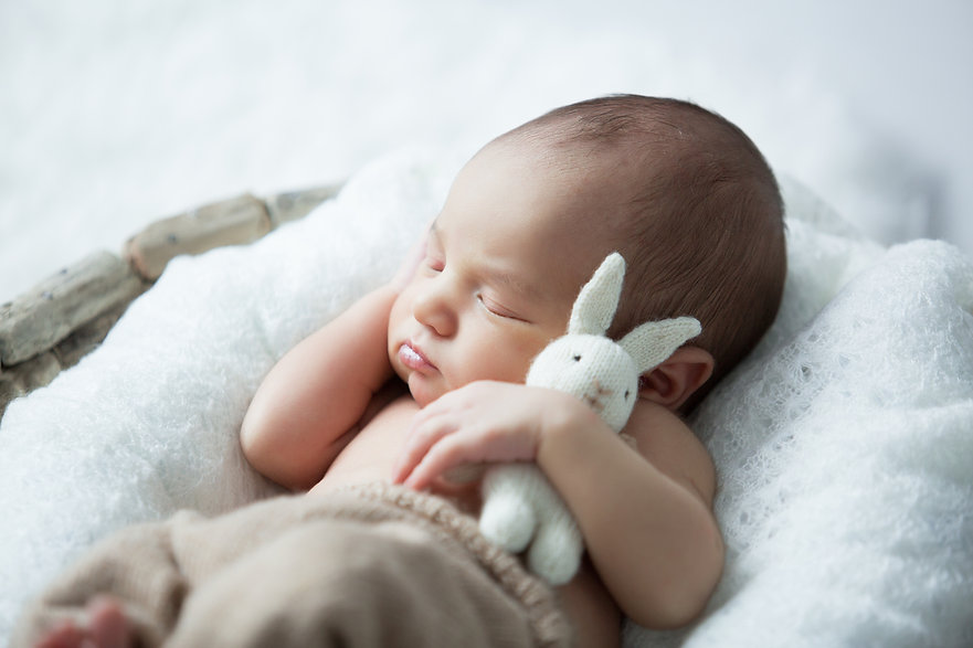 sweet newborn baby sleeps with a toy har