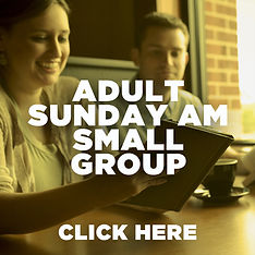 Adult Sunday AM Small Group.jpg