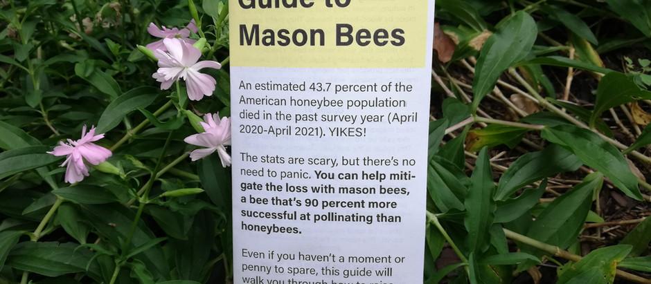 Free Printable Guide to Mason Bees