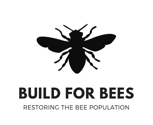 Build for Bees: Becoming a Nonprofit Organization