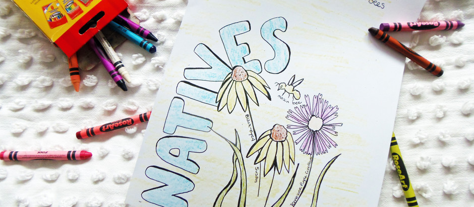 Free Printable Pollinator Coloring Pages