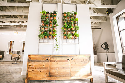 Artika-Salon-Plant-Wall