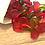 Thumbnail: Haribo Cherries