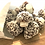 Thumbnail: Coconut Mushrooms