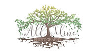 all mine photography logo