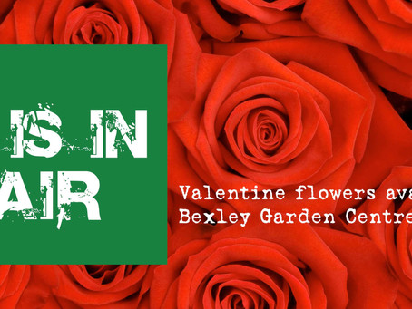 Valentines flowers available at our Abbey Wood branch...