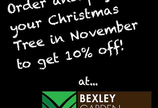 Christmas starts early at Bexley Garden Centre!