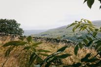 Swaledale, Yorkshire Dales, 2020