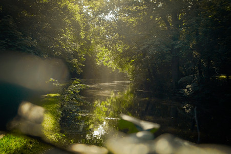 Sunrise on the Leeds-Liverpool canal, 2020