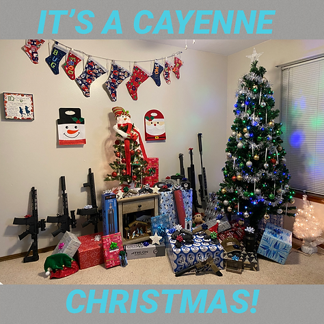 Cayenne Christmas 2020.png