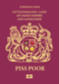piss poor passport image.jpg