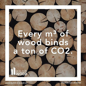 "Slogan: ""Every m³ of wood binds a ton of CO2"" in front of stacked logs"