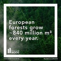 """European forests grow about 840 million m³ per year"" on dense forest background"