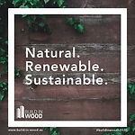 "Key words: ""Natural. Renewable. Sustainable"" in front of wooden background with ivy plants"