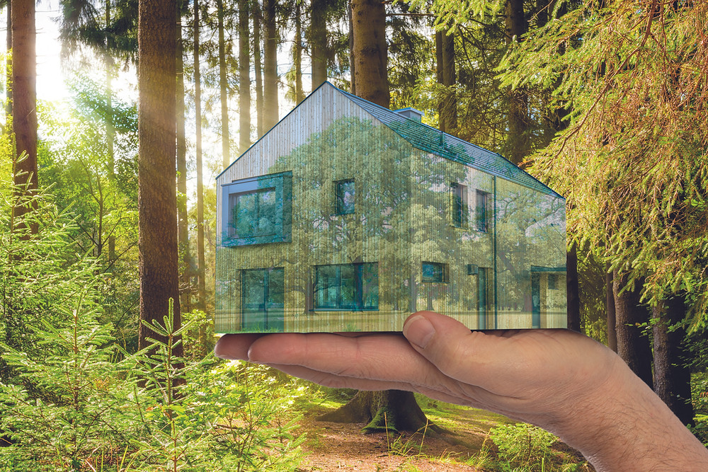 A hand holding a transparent house in which you can see multiple trees - in front of a forest with warm sunlight breaking through