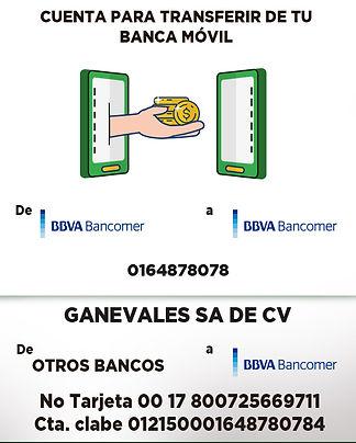 Pagos de otros bancos.jpg