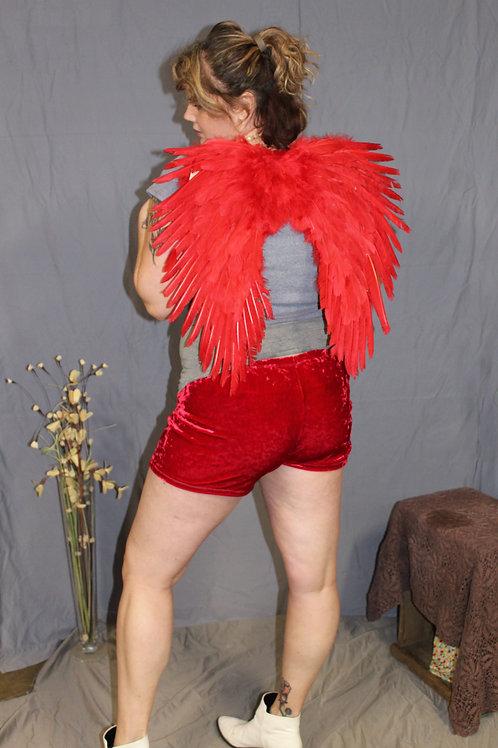 Red Velvet Cheeky Shorts