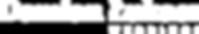 Damian.Logo.poziom.białe.png