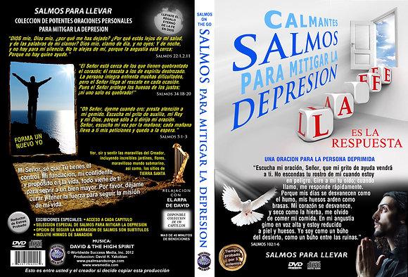 Para Mitigar la Depresion