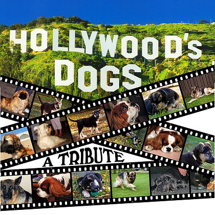 Hollywood's Dogs  A Tribute