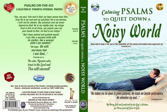 To Quiet Down a Noisy World