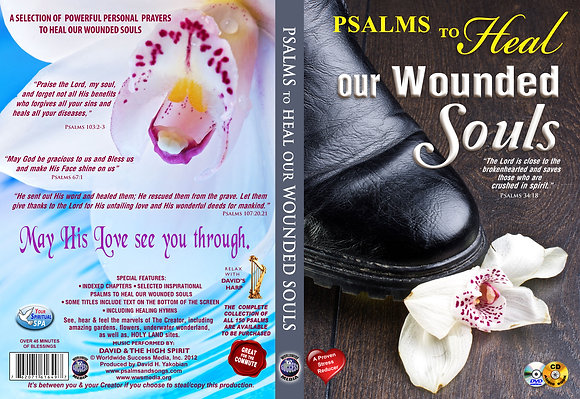 Heal Our Wounded Soul