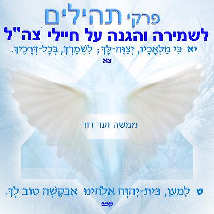פרקי תפילה לשמירה והגנה על חיילי צבא הגנה לישראל (