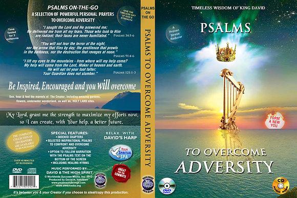 To Overcome Adversity