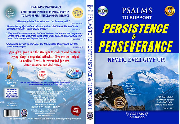 To Support Persistence & Perseverance