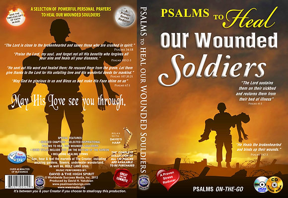 To Heal Our Wounded Soldiers, Vol. 1