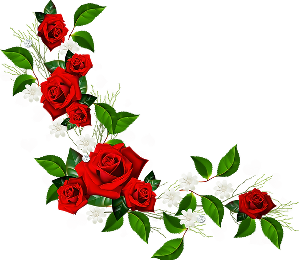 Decorative_Element_with_Red_Roses_ White