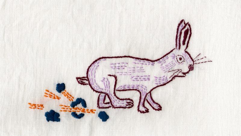 bunny running so fast