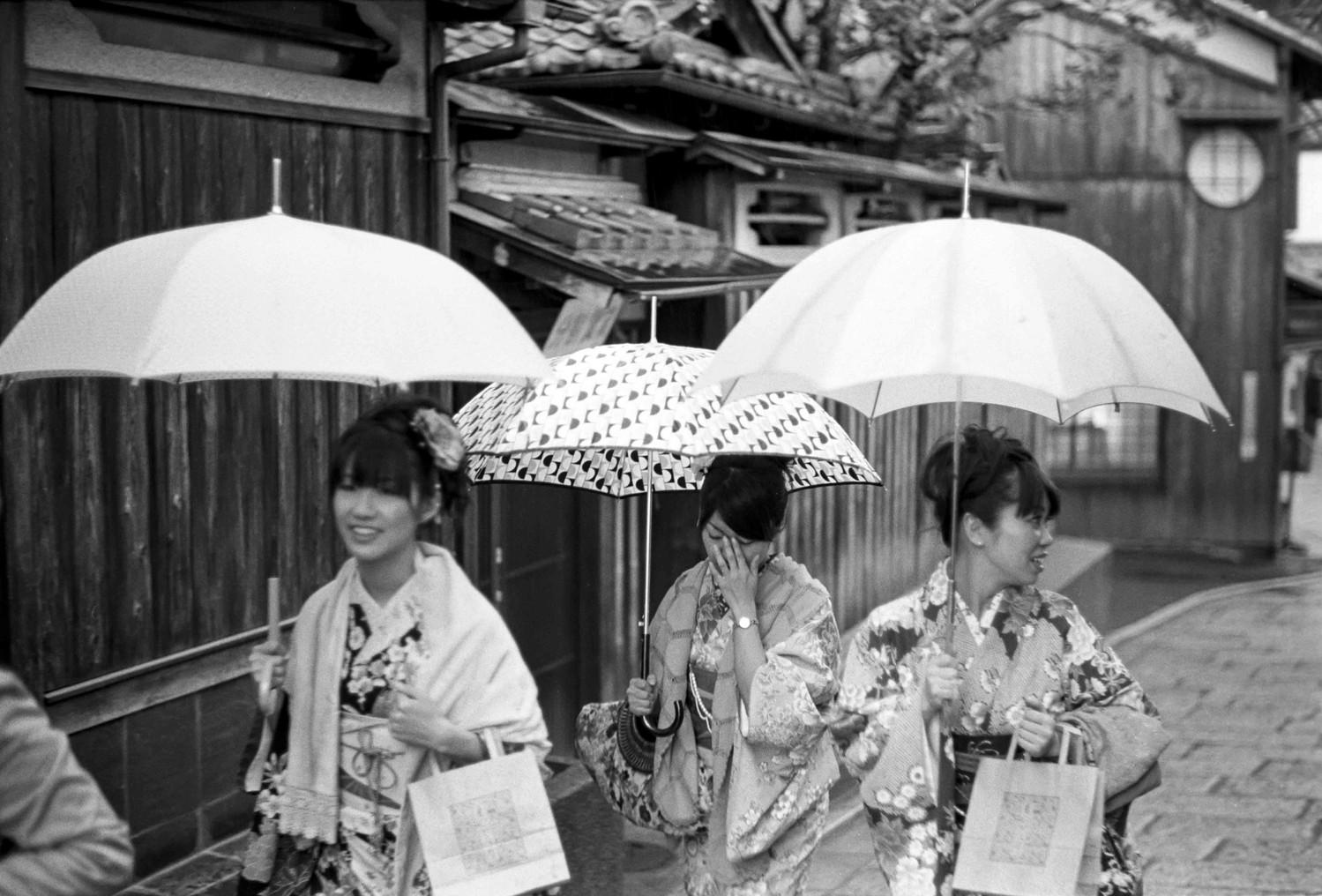 Kyoto 2010 • Umbrellas