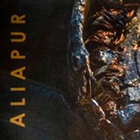 Aliapur  • michel djaoui • photographe • lyon