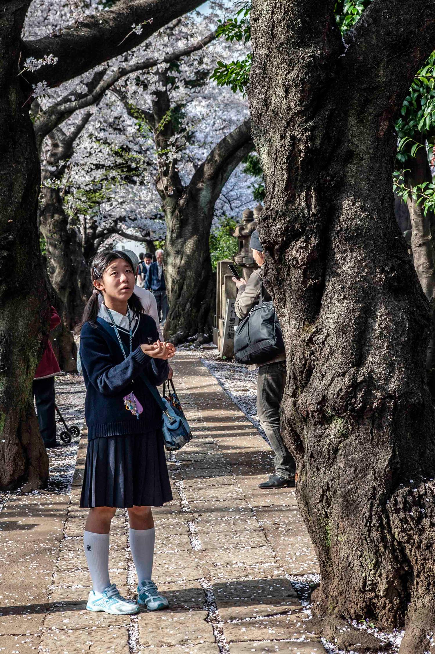 06 • Tokyo Yanaka