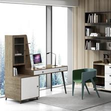Home Office 11.jpeg