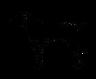 Braco logo.png