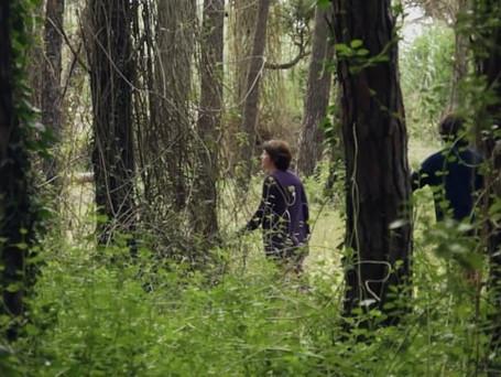 Documental - Cuando la primavera se escapa